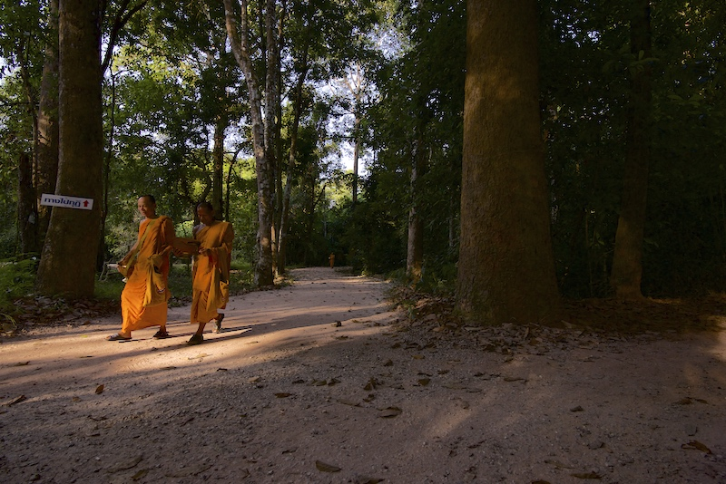 Two Theravada Buddhist monks walking to breakfast at Suan Mokkh Buddhist temple (The Garden of Liberation) in Chaiya, Thailand.