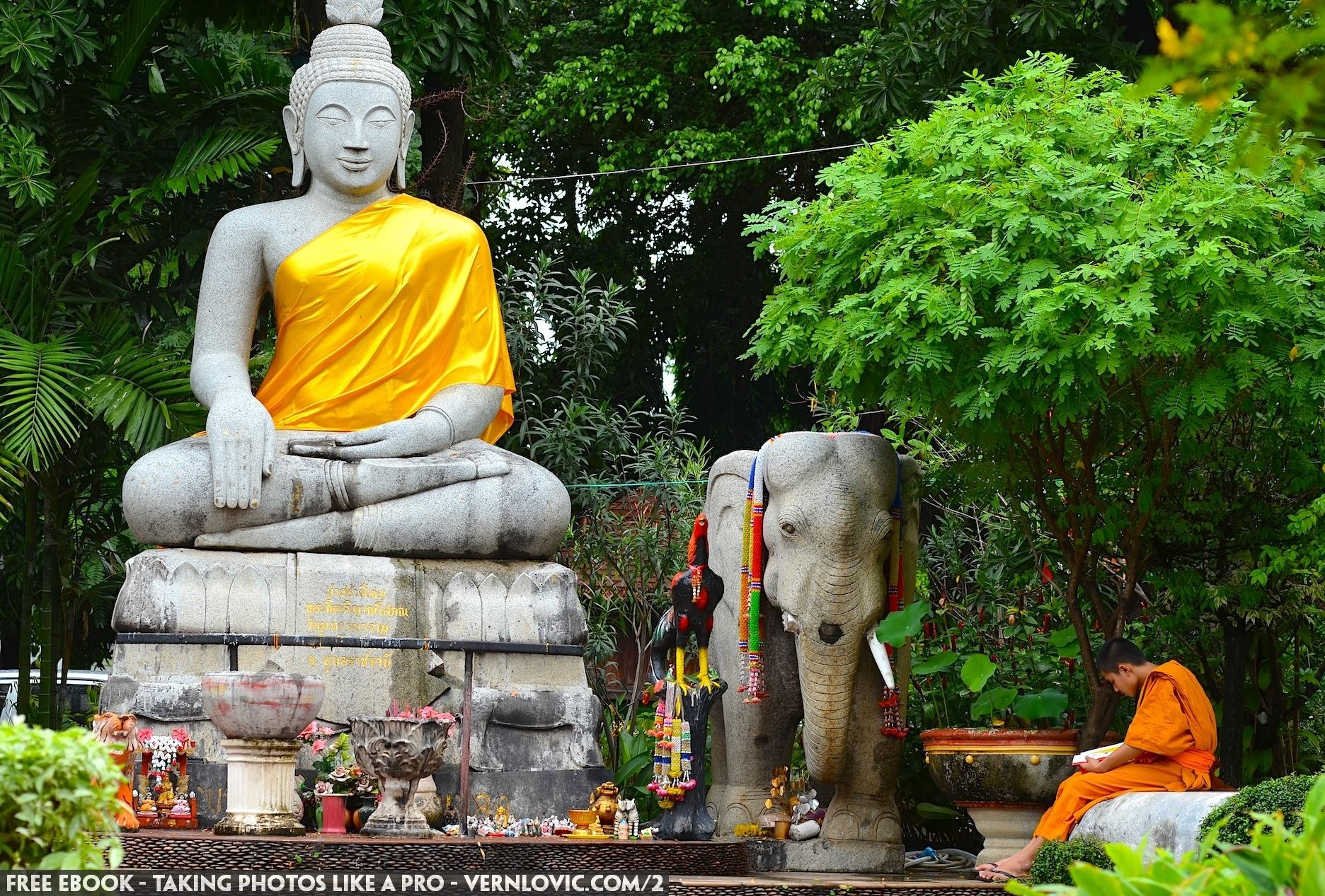 A white elephant by Buddha meditating in a Buddhist temple in Thailand.